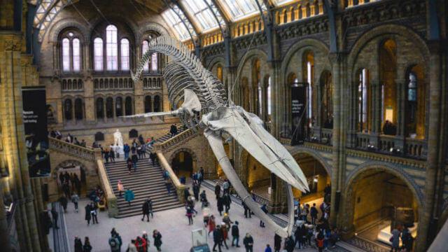 un des musées de Londres à voir lors de votre séjour