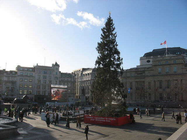 Trafalgar Square Arbre Noel