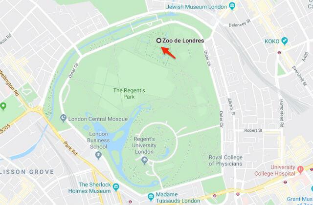 Zoo Londres Regent's Park