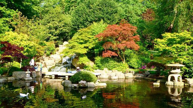 Holland Park Londres