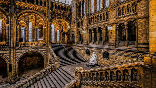 Musee Histoire Naturelle Hintze Hall