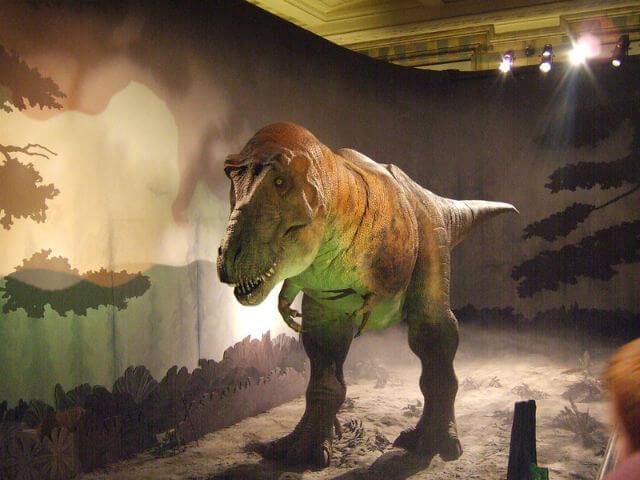 Musee Histoire Naturelle Londres T-Rex